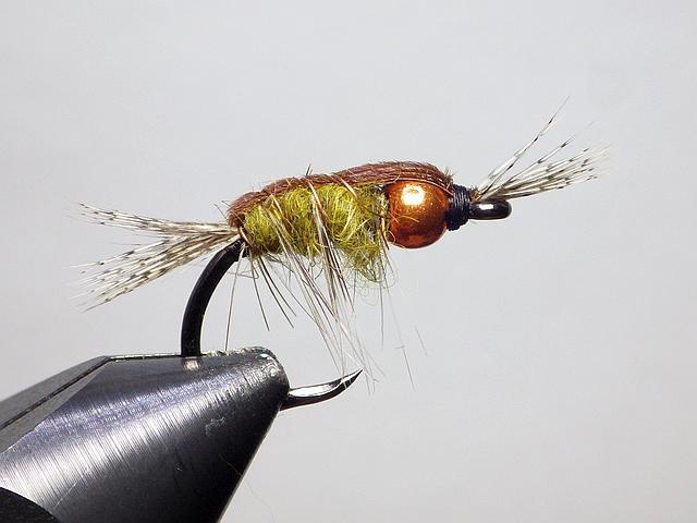 Avozetto webzine pêche mouche montage nymphe carpe