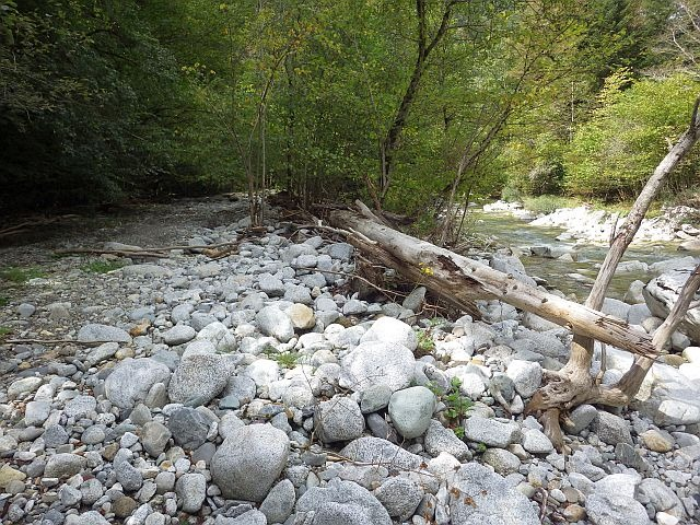 Reportage sur le Gave d'Ossau dépt des Pyrénées Atlantiques