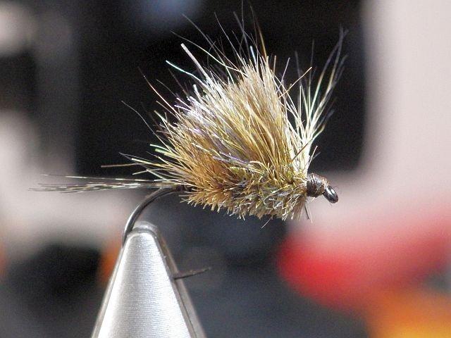 Avozetto webzine pêche mouche montage oreille de chevreuil