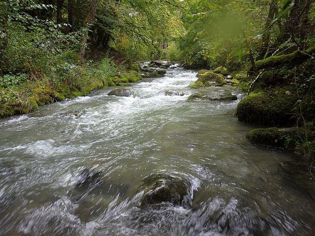 reportage rivière bronze haute-savoie
